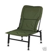 Folding Adjustable Chair